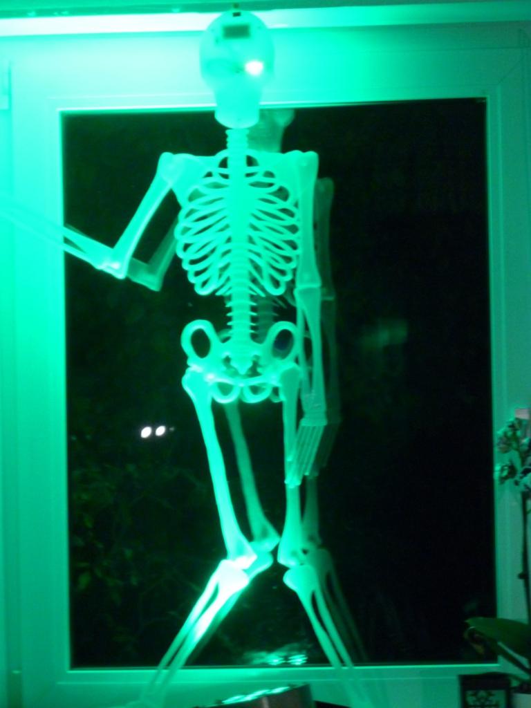 Fensterdeko Halloween